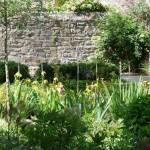 Jardin Ernest Renan, vue sur la Maison Ernest Renan, et le bâtie environnant.