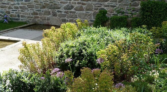 Jardin Ernest Renan, parterre de buis, Euphorbia x martinii, Allium christophi.